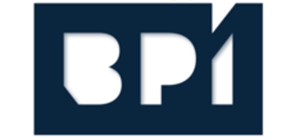 BPI - Business Performance Institute logo